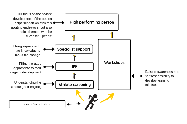 Diagram shows the process behind Reaching for the Podium programme